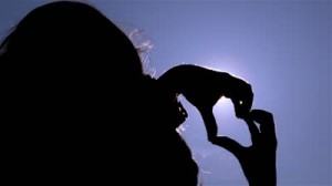 stock-footage-young-girl-making-love-heart-sign-with-her-hands-at-sunset-girl-shapes-heart-with-her-hands-over